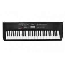 Синтезатор, 61 клавиша, Ringway TB-100